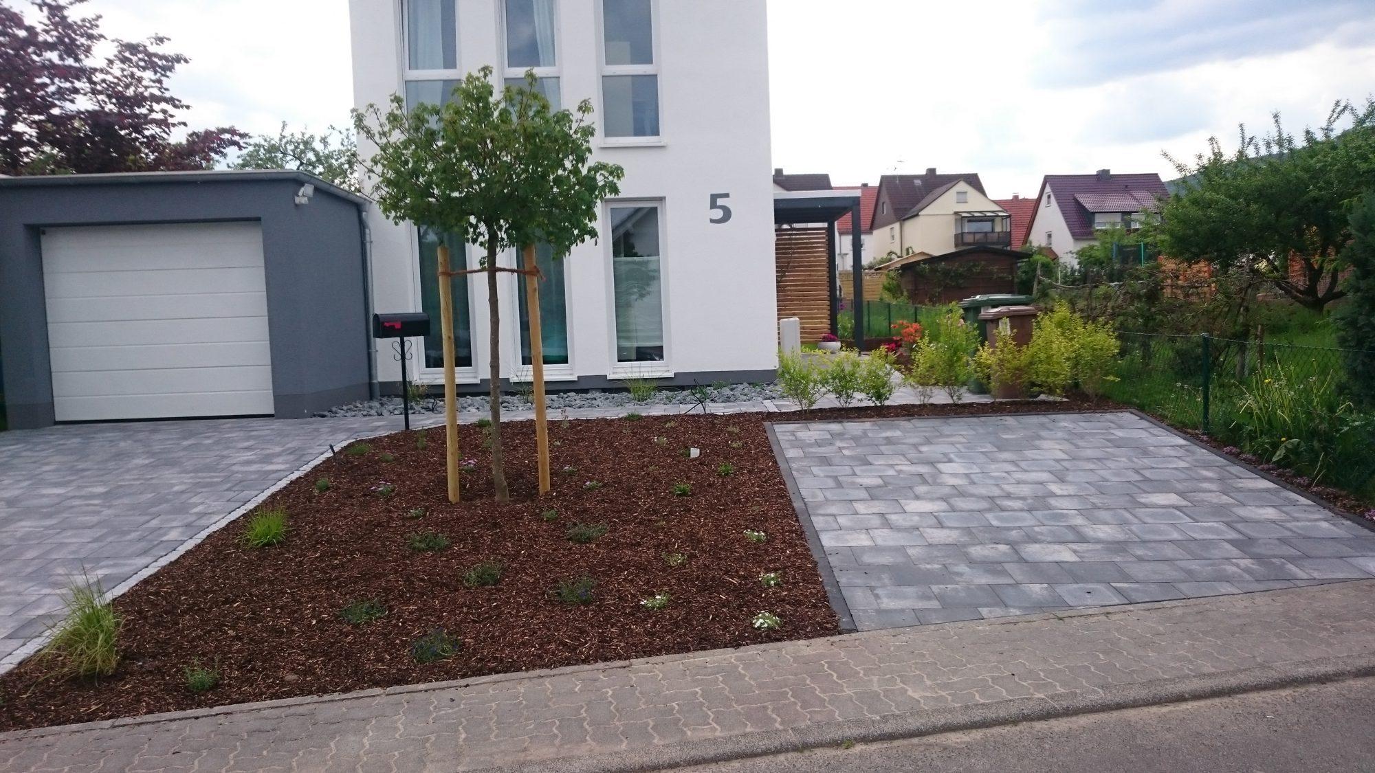 Döring-Gartengestaltung Vorgarten